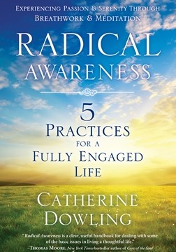 Radical Awareness final cover
